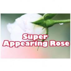 Super Appearing Rose by Nelson De La Prida
