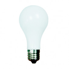 Comedy Light Bulb
