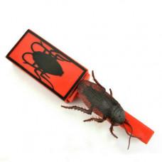 Cockroach Stick