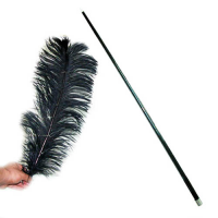 Feather Becomes Cane,Black