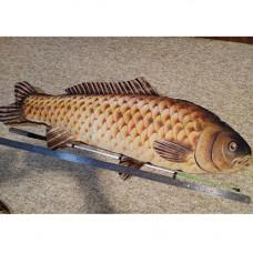 Появляющаяся рыба