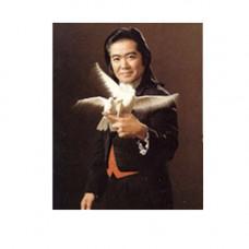 Shimada Dove Act,DVD