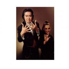 Shimada manipulation,DVD