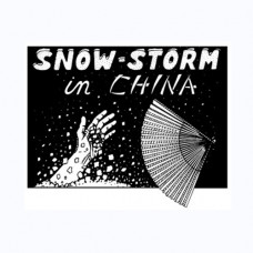 Snowstorm,DVD семинар