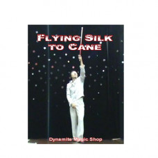 Flying Silk to Cane