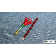 PENCIL TO FLOWER