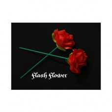 Flash Flower by GD Wu GT magic store,обучающий семинар на DVD