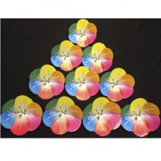 Flower Million (Rainbow)