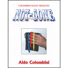 Not Gone by Wild Colombini