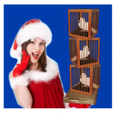 Appearing Three Dove Cages from Empty Paper Bag