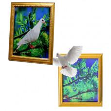 Magic Dove Frame Trick