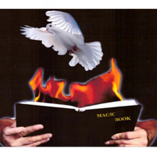 Dove and Fire Book