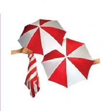 Colorful Silks and Umbrellas