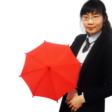 Production Umbrella,red,mini