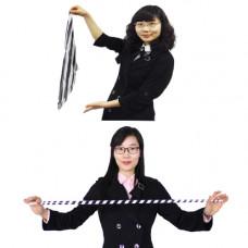Silk to Cane,zebra,metal